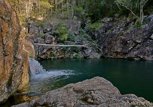 Photo of D'Aguilar National Park - Neurum Creek Camping